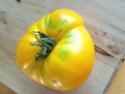 Farmer's market, Portland State University PSU, heirloom tomato